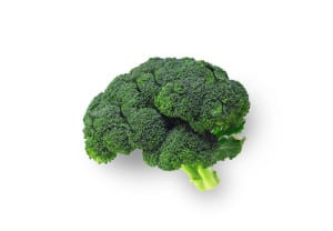 Brocolli shaped like brain isolated