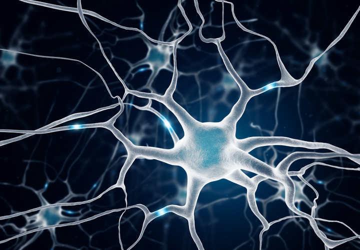 Resultado de imagen de Vibraciones en nuestro cerebro, neuronas inquietas GIPS