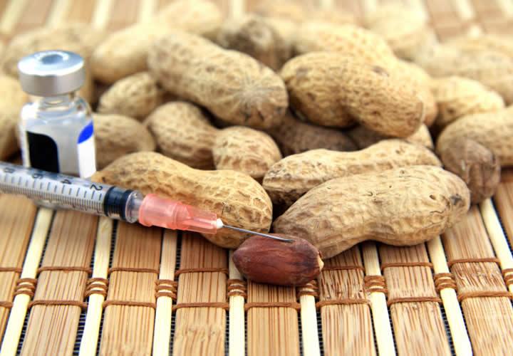 Recetas Para Alérgicos WP
