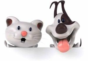 #Matamesta perros VS gatos ¡Vota aquí!