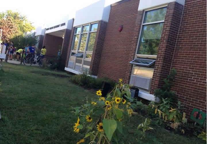 Escuelas verdes: escuelas sustentables
