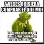 @AMonica_Meza-01