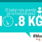 momfacts 04