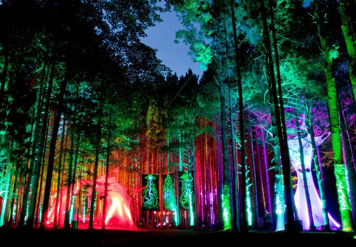 12-festivales-2