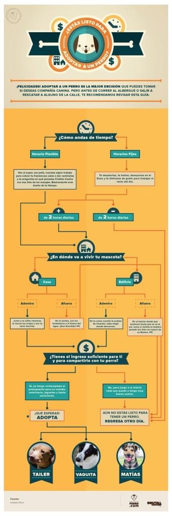 infografia-10