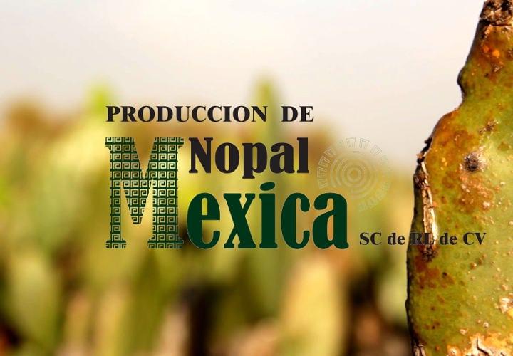 Nopal-Mexica