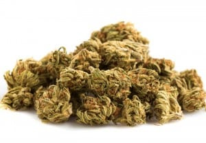 Lo-que-deben-saber-sobre-la-marihuana