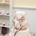 Sacher Cake 5