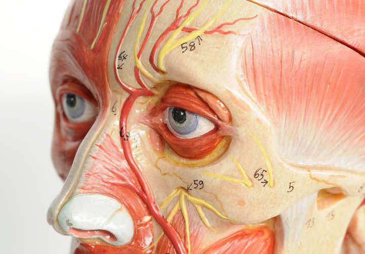 Consultorio: Todo lo que urge que sepas de tus ojos y su salud
