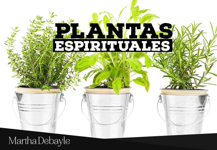 plantas-espirituales