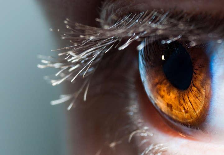 mostros-ojos
