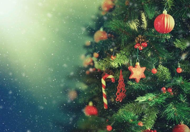 lo que no sabias de navidad