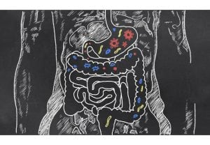 Intestines with Gut Bacteria on Blackboard