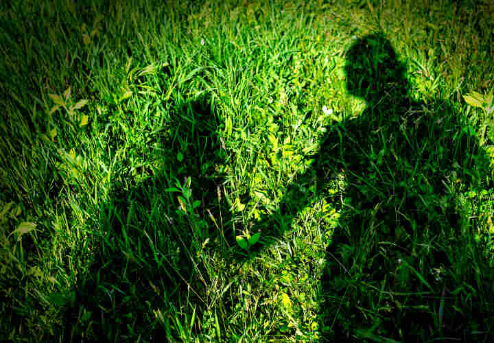 Shadow of mother and child holding hands on grass