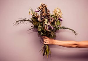 A woman's hand is holding a bouquet of dead flowers