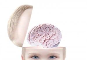 como funciona el cerebro de mi bebe