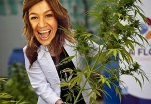 Legalizan la marihuana