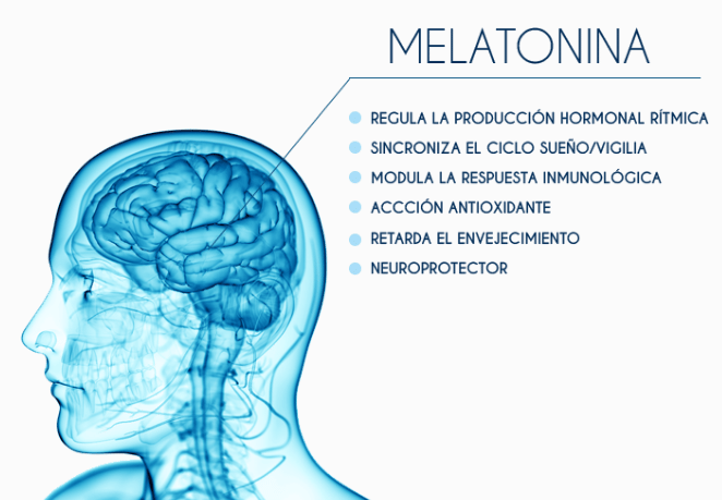melatonina